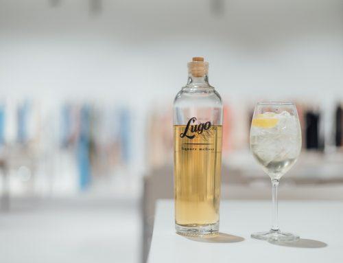 Cocktail Hugo – Le Spritz Blanc
